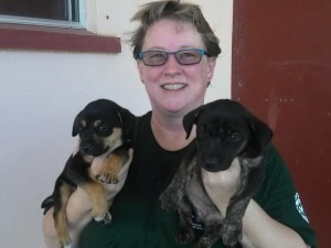 Pups Rescued on Rota