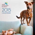 SASF_2015Calendar_Cover