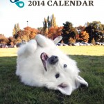 SASF_Calendar